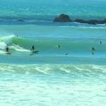 Descubra belas praias em Santa Catarina antes do verão chegar.